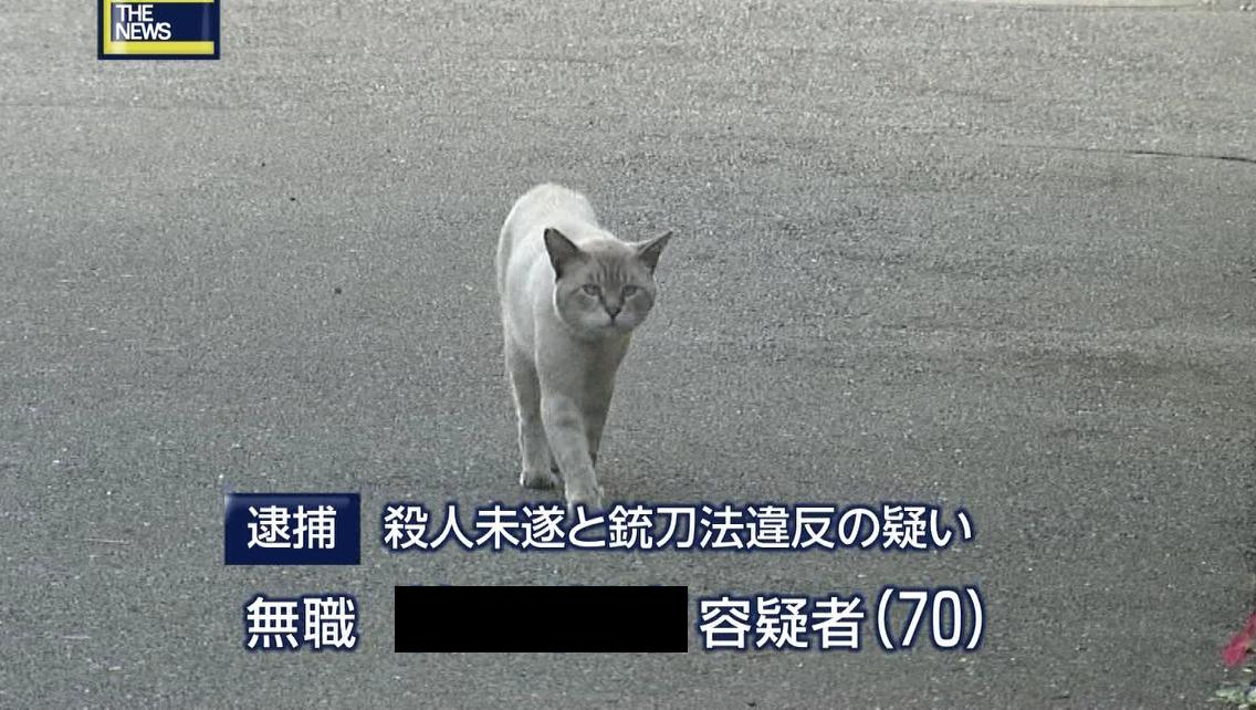 【週刊ポスト】元山口組の「猫組長」 現在、悠々自適の暮らしができる理由